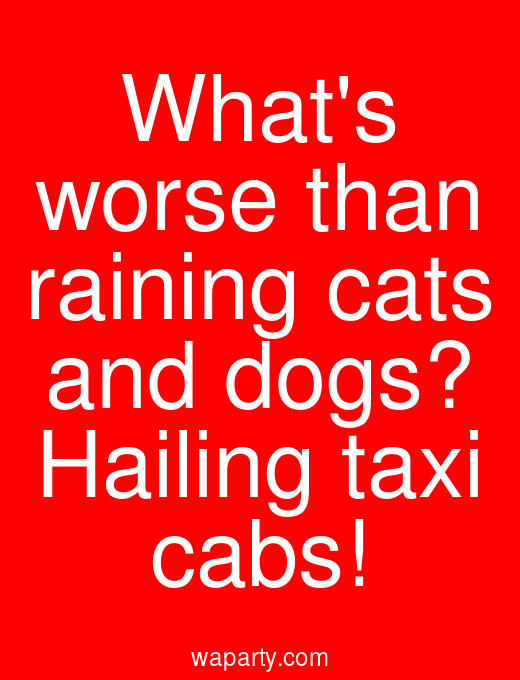 Whats worse than raining cats and dogs? Hailing taxi cabs!