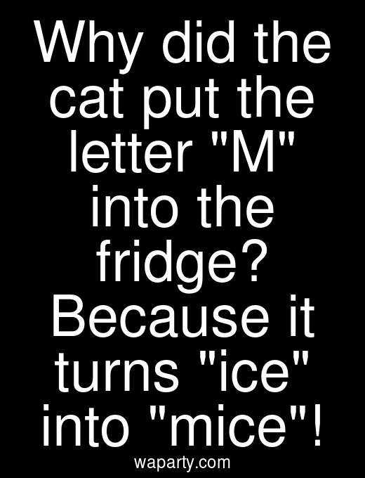 Why did the cat put the letter M into the fridge? Because it turns ice into mice!