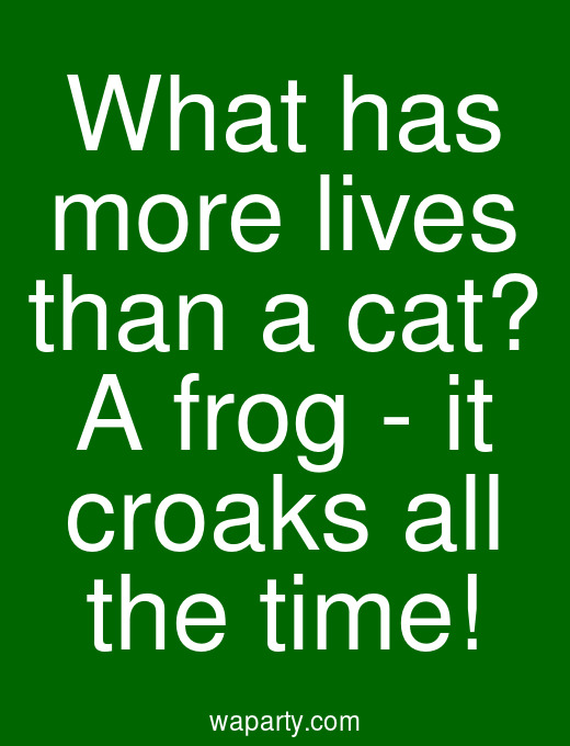 What has more lives than a cat? A frog - it croaks all the time!