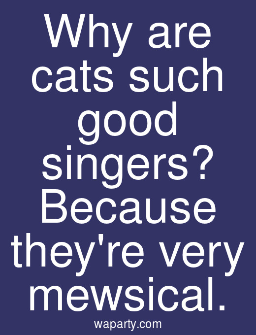 Why are cats such good singers? Because theyre very mewsical.