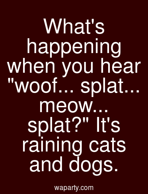 Whats happening when you hear woof... splat... meow... splat? Its raining cats and dogs.