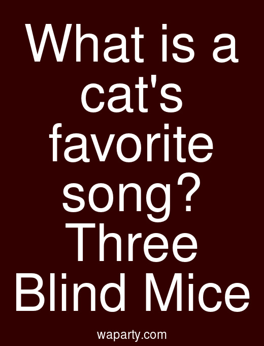 What is a cats favorite song? Three Blind Mice
