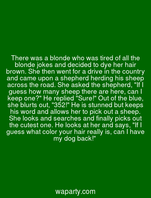 There was a blonde who was tired of all the blonde jokes and decided to dye her hair brown. She then went for a drive in the country and came upon a shepherd herding his sheep across the road. She asked the shepherd, If I guess how many sheep there are here, can I keep one? He replied Sure! Out of the blue, she blurts out, 352! He is stunned but keeps his word and allows her to pick out a sheep. She looks and searches and finally picks out the cutest one. He looks at her and says, If I guess what color your hair really is, can I have my dog back!