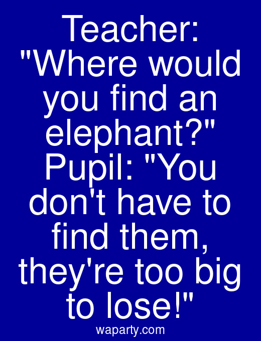 Teacher: Where would you find an elephant? Pupil: You dont have to find them, theyre too big to lose!