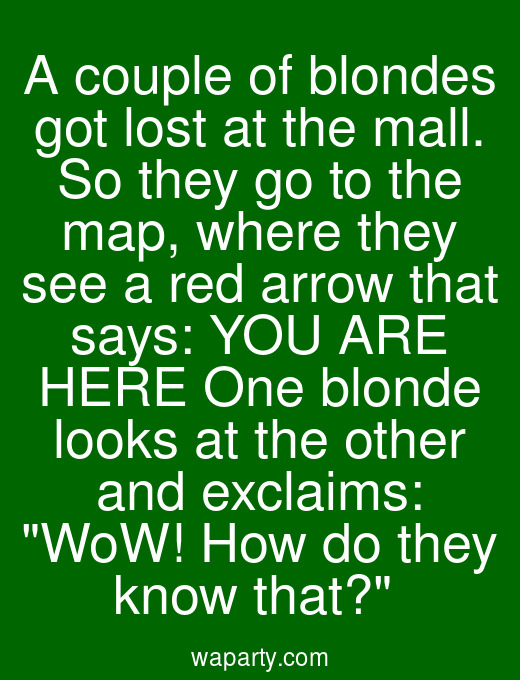 A couple of blondes got lost at the mall. So they go to the map, where they see a red arrow that says: YOU ARE HERE One blonde looks at the other and exclaims: WoW! How do they know that?
