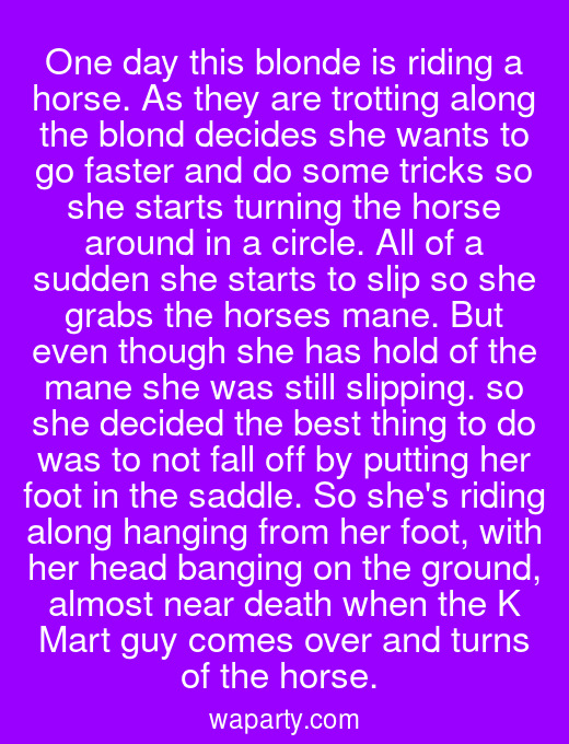 One day this blonde is riding a horse. As they are trotting along the blond decides she wants to go faster and do some tricks so she starts turning the horse around in a circle. All of a sudden she starts to slip so she grabs the horses mane. But even though she has hold of the mane she was still slipping. so she decided the best thing to do was to not fall off by putting her foot in the saddle. So shes riding along hanging from her foot, with her head banging on the ground, almost near death when the K Mart guy comes over and turns of the horse.