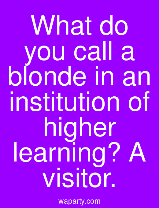 What do you call a blonde in an institution of higher learning? A visitor.
