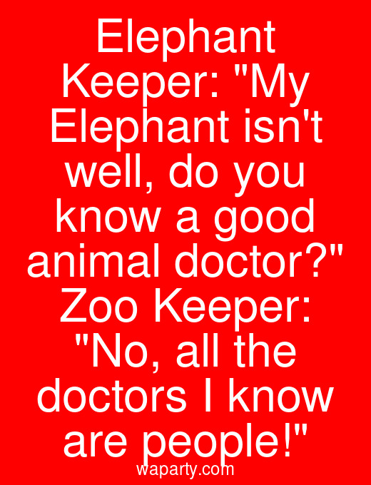 Elephant Keeper: My Elephant isnt well, do you know a good animal doctor? Zoo Keeper: No, all the doctors I know are people!