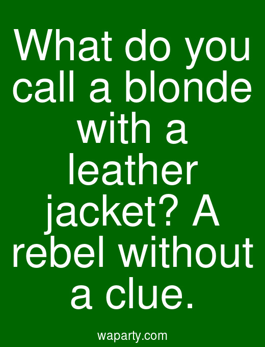 What do you call a blonde with a leather jacket? A rebel without a clue.