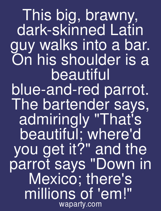 This big, brawny, dark-skinned Latin guy walks into a bar. On his shoulder is a beautiful blue-and-red parrot. The bartender says, admiringly Thats beautiful; whered you get it? and the parrot says Down in Mexico; theres millions of em!