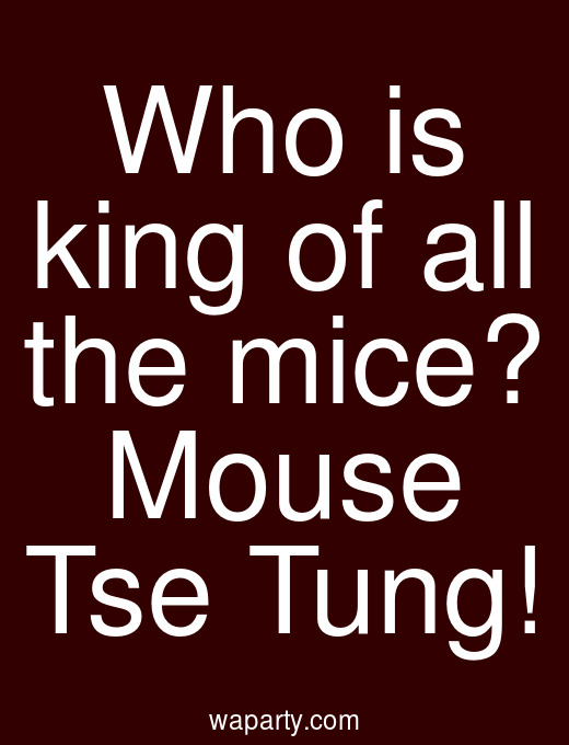 Who is king of all the mice? Mouse Tse Tung!