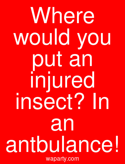 Where would you put an injured insect? In an antbulance!