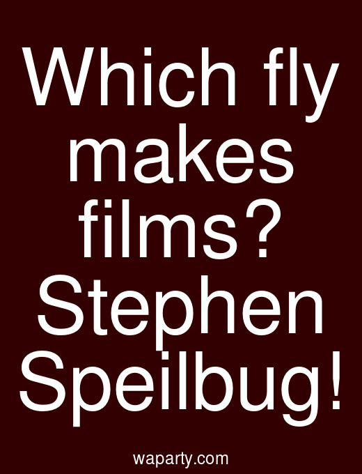 Which fly makes films? Stephen Speilbug!