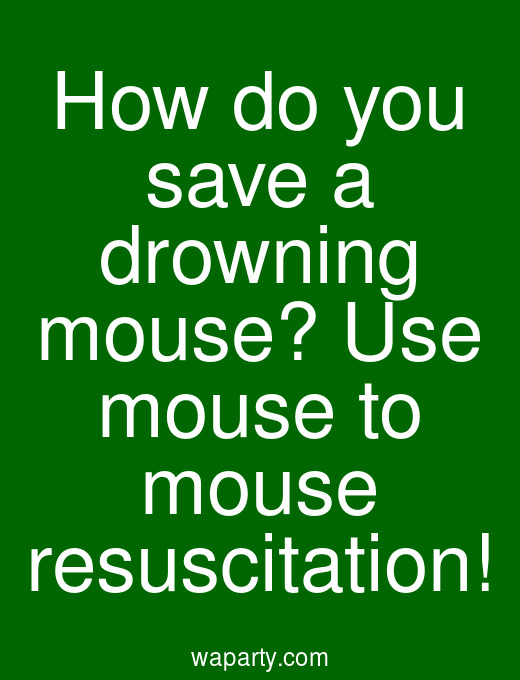 How do you save a drowning mouse? Use mouse to mouse resuscitation!