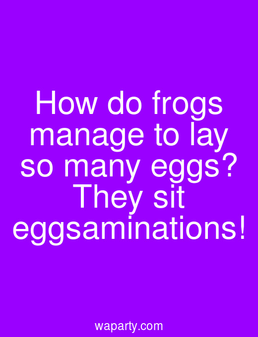 How do frogs manage to lay so many eggs? They sit eggsaminations!