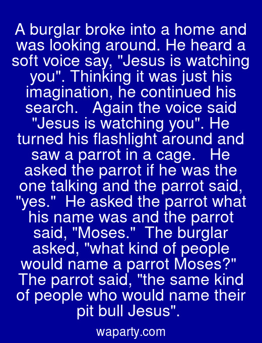 A burglar broke into a home and was looking around. He heard a soft voice say, Jesus is watching you. Thinking it was just his imagination, he continued his search.   Again the voice said Jesus is watching you. He turned his flashlight around and saw a parrot in a cage.   He asked the parrot if he was the one talking and the parrot said, yes.  He asked the parrot what his name was and the parrot said, Moses.  The burglar asked, what kind of people would name a parrot Moses?  The parrot said, the same kind of people who would name their pit bull Jesus.