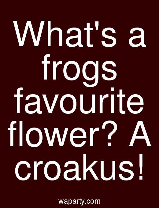 Whats a frogs favourite flower? A croakus!