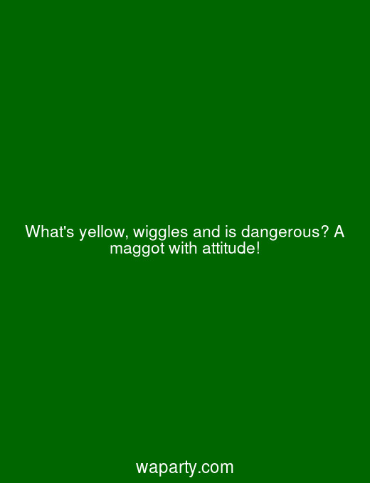 Whats yellow, wiggles and is dangerous? A maggot with attitude!
