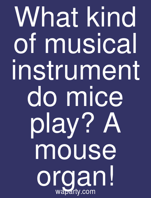 What kind of musical instrument do mice play? A mouse organ!