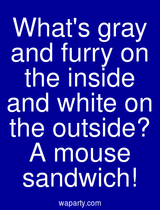 Whats gray and furry on the inside and white on the outside? A mouse sandwich!