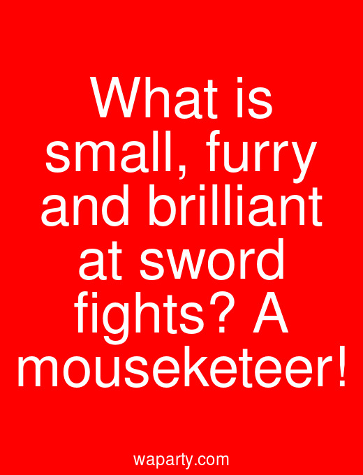 What is small, furry and brilliant at sword fights? A mouseketeer!