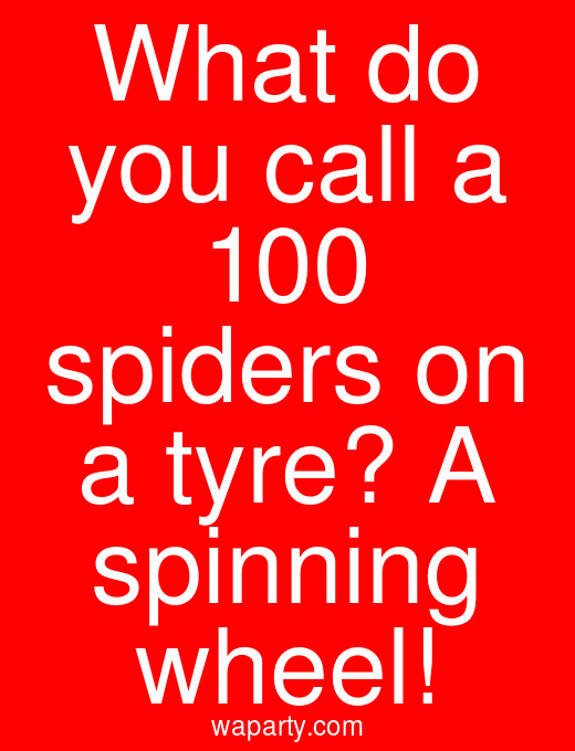 What do you call a 100 spiders on a tyre? A spinning wheel!
