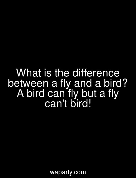 What is the difference between a fly and a bird? A bird can fly but a fly cant bird!