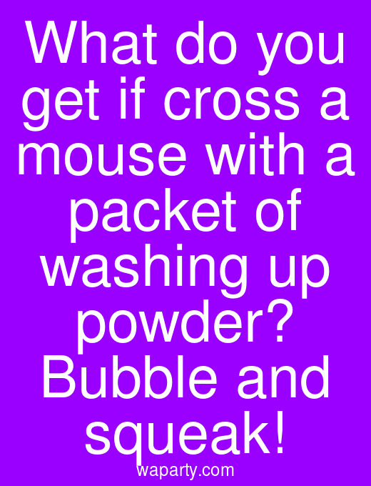 What do you get if cross a mouse with a packet of washing up powder? Bubble and squeak!
