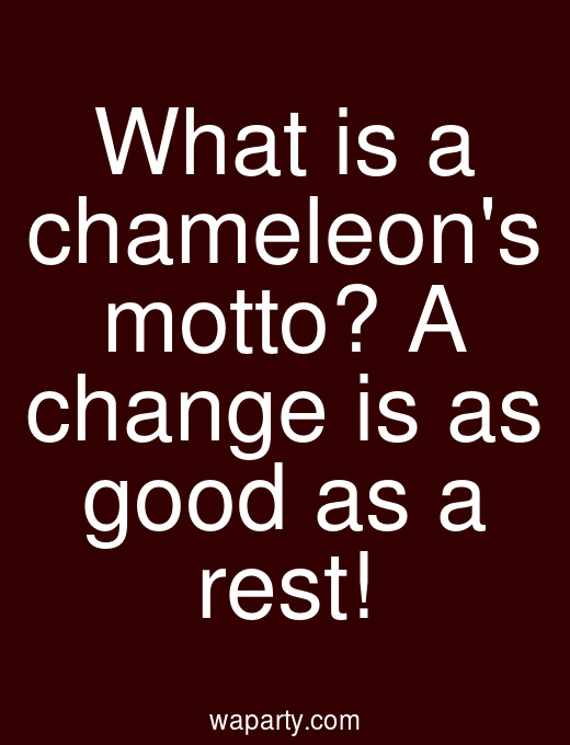 What is a chameleons motto? A change is as good as a rest!