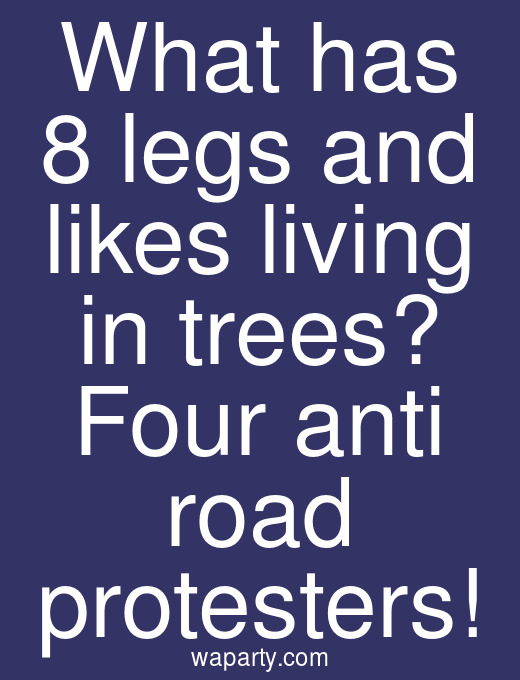 What has 8 legs and likes living in trees? Four anti road protesters!