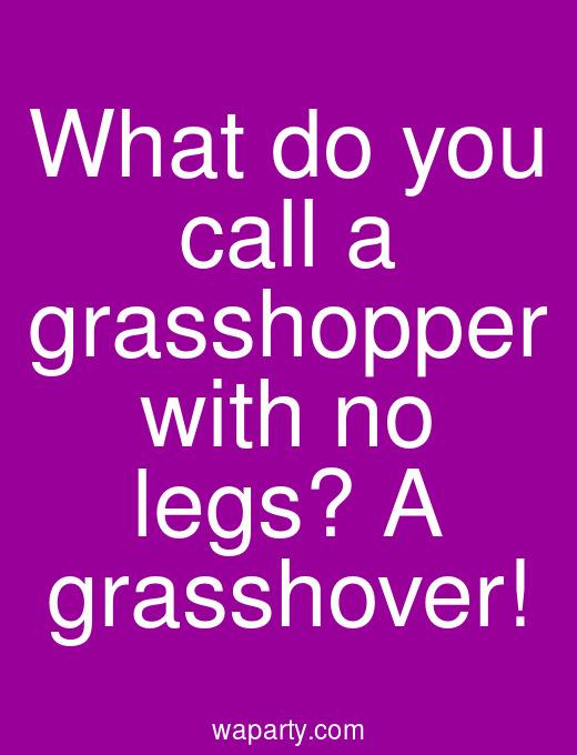 What do you call a grasshopper with no legs? A grasshover!