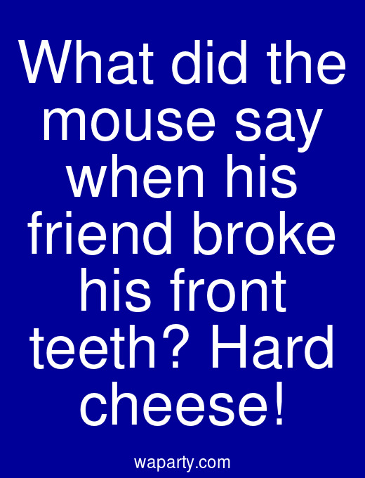 What did the mouse say when his friend broke his front teeth? Hard cheese!