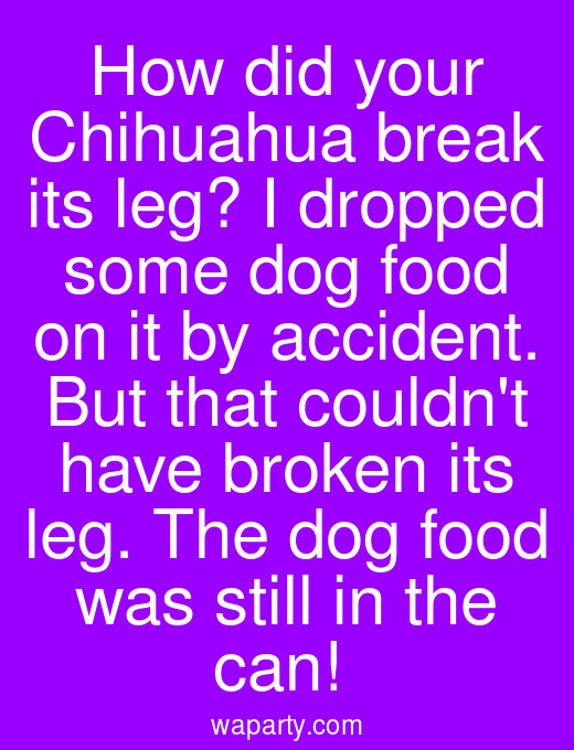 How did your Chihuahua break its leg? I dropped some dog food on it by accident. But that couldnt have broken its leg. The dog food was still in the can!