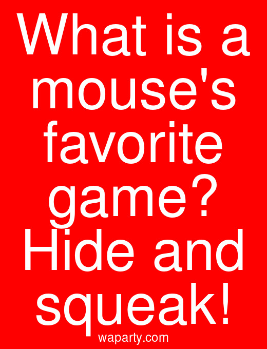 What is a mouses favorite game? Hide and squeak!