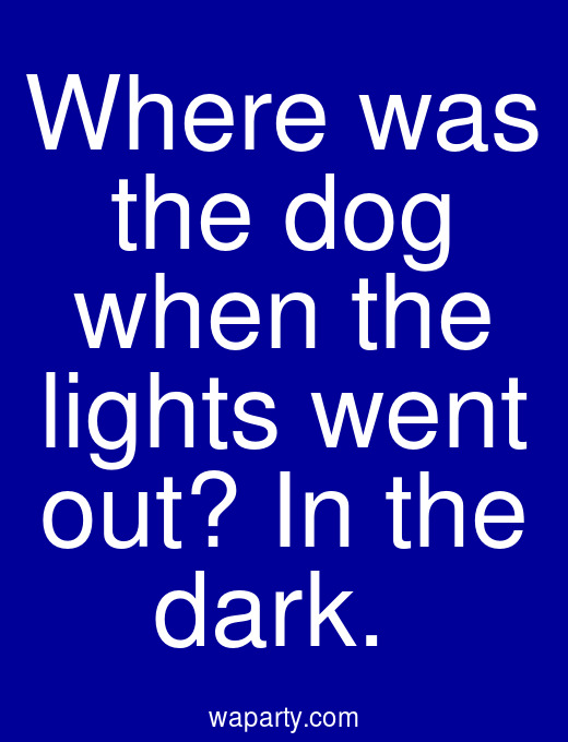 Where was the dog when the lights went out? In the dark.