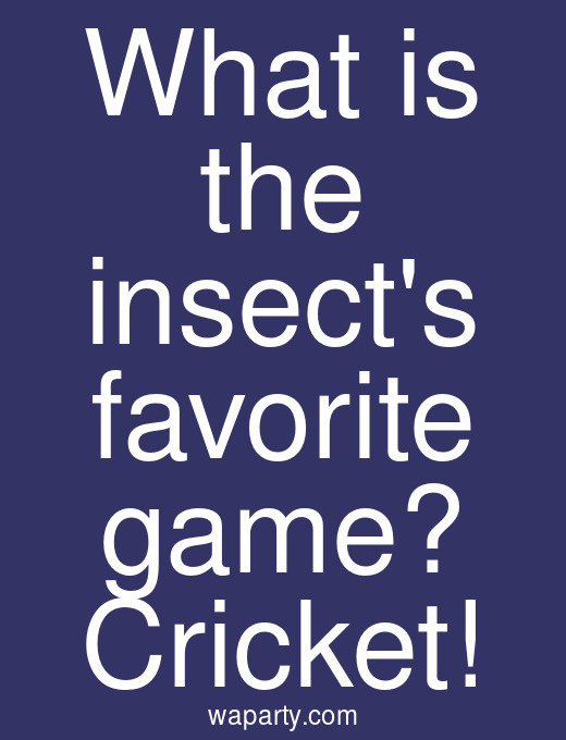 What is the insects favorite game? Cricket!