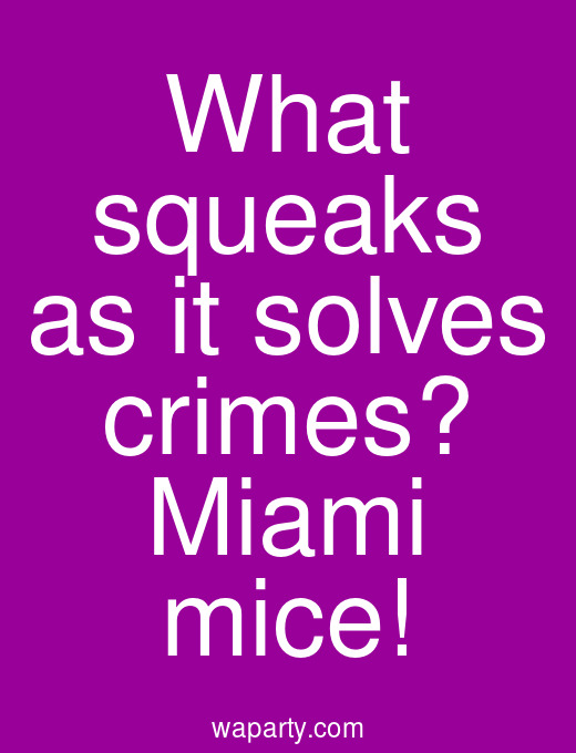 What squeaks as it solves crimes? Miami mice!