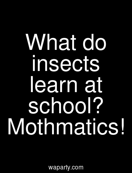 What do insects learn at school? Mothmatics!