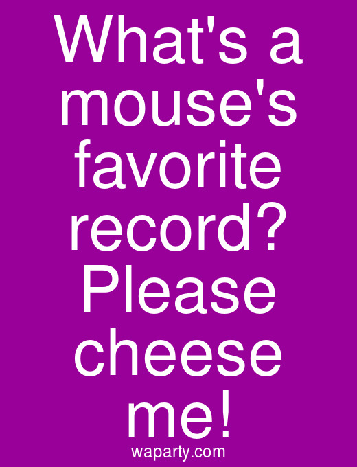Whats a mouses favorite record? Please cheese me!