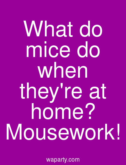 What do mice do when theyre at home? Mousework!