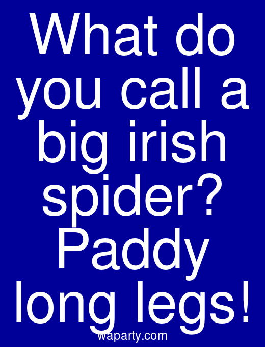 What do you call a big irish spider? Paddy long legs!