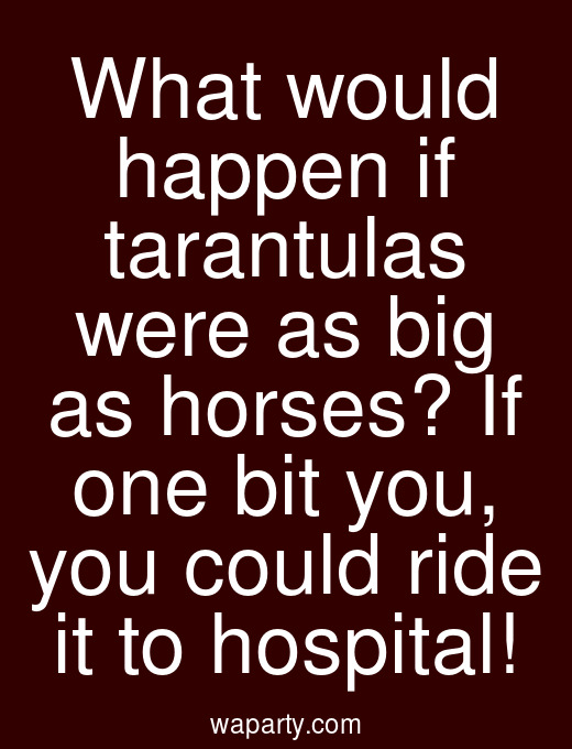 What would happen if tarantulas were as big as horses? If one bit you, you could ride it to hospital!