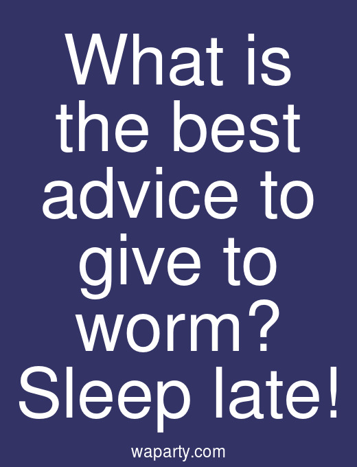 What is the best advice to give to worm? Sleep late!