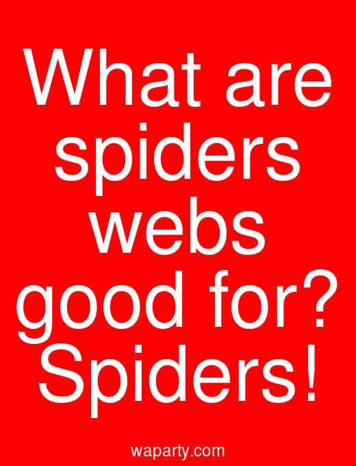 What are spiders webs good for? Spiders!