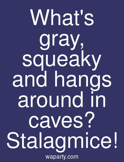 Whats gray, squeaky and hangs around in caves? Stalagmice!