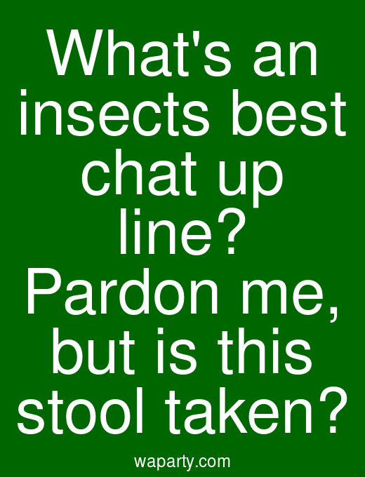 Whats an insects best chat up line? Pardon me, but is this stool taken?