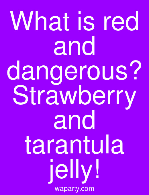 What is red and dangerous? Strawberry and tarantula jelly!