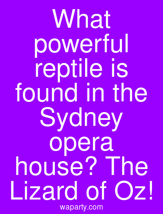 What powerful reptile is found in the Sydney opera house? The Lizard of Oz!