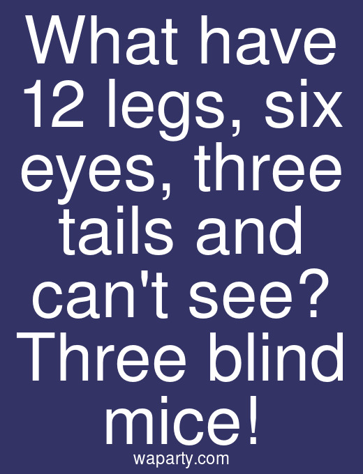What have 12 legs, six eyes, three tails and cant see? Three blind mice!