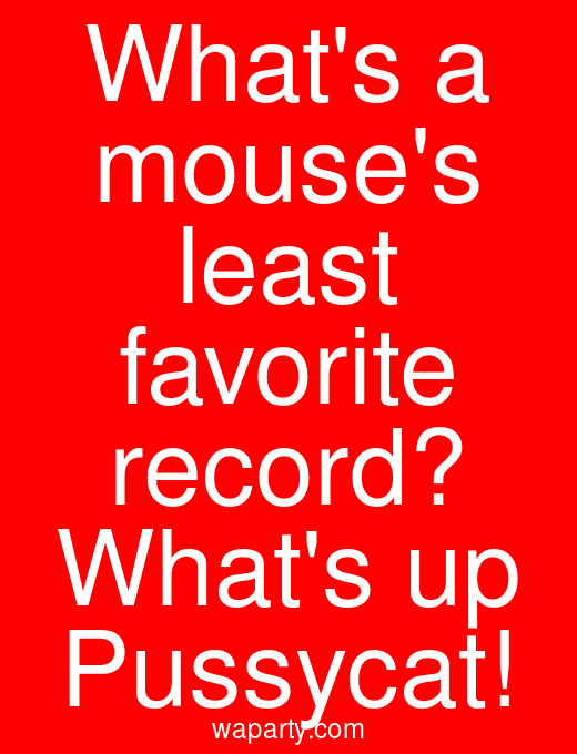 Whats a mouses least favorite record? Whats up Pussycat!